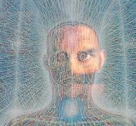 Alex Grey avatar