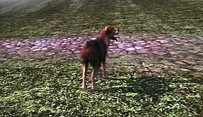 Fable 2's dog